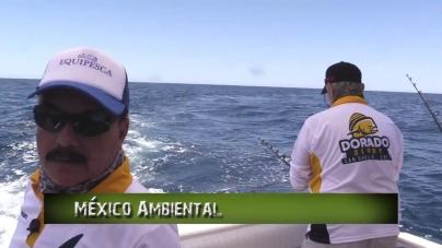 Pesca en Directo – 5to Dorado Derby San Carlos 2017 – Ep.10, Temp 7