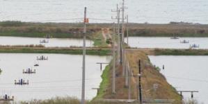 Programa Especial de Energía para el Campo en materia de energía eléctrica para uso acuícola