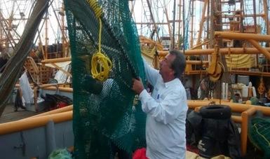 Sinaloa: Certificadas 521 embarcaciones camaroneras con 3,059 Dispositivos Excluidores de Tortugas (DET)