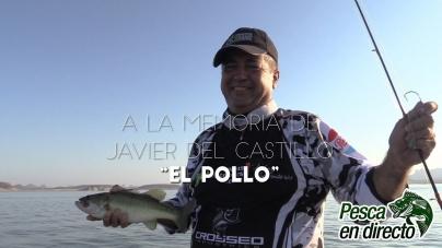 """Pesca en Directo – Pescando en El Oviáchic con Erwins Ronquillo y """"El Pollo"""" Castillo – Ep17 Temp 7"""