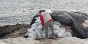 Clausuran aprovechamiento ilegal de guano en el Archipiélago Isla San Jerónimo en la Reserva de la Biósfera Islas del Pacífico en BC