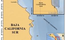 México cuenta con 32 refugios pesqueros, para la conservación de recursos pesqueros y su sustentabilidad