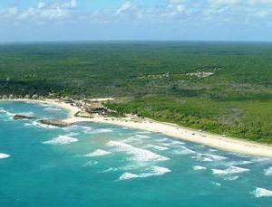 La Reserva de la Biósfera Caribe Mexicano, contiene 50 % del Sistema Arrecifal Mesoamericano