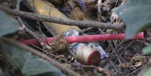 """""""Sin popote está bien"""", campaña de la Semarnat para inhibir uso de este dañino producto"""