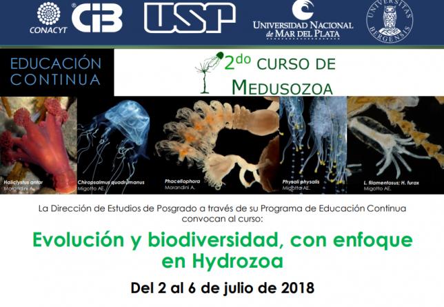Curso sobre biología de Medusozoa con enfoque en Hydrozoa en el CIBNOR de La Paz, BC