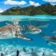 Limpiemos nuestros océanos