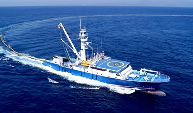 SAGARPA establece veda de túnidos en el Océano Pacífico Oriental que favorece a los grandes industriales del atún