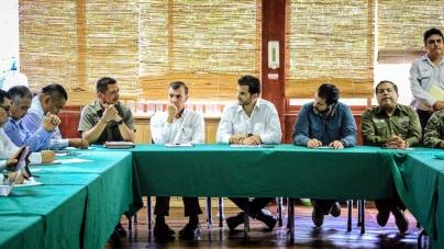 Persiste enigma por muerte de manatíes (Trichechus manatus) en Tabasco; gobierno federal está rebasado