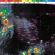 Se pronostican tormentas intensas para Sonora, Baja California Sur, Sinaloa y Chiapas