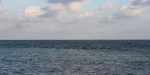 Los océanos Pacífico y Atlántico producen la enorme diversidad biológica y ecosistémica de México