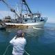 Barco sardinero para multa por pesca ilegal en la reserva de la biósfera el Vizcaíno, B.C.S.