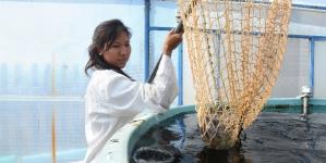 La salud pública dependerá de la acuacultura, México en alto riesgo