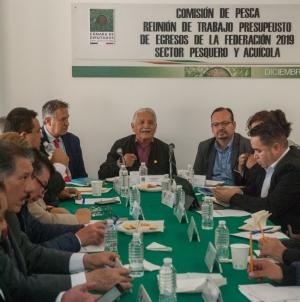 El sector pesquero y acuícola fortalecerá la autosuficiencia alimentaria en México