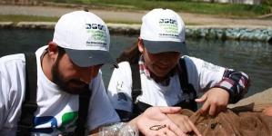 Para evitar su extinción en estado silvestre, científicos de la UMSNH van a reintroducir el pez Zoogoneticus tequila en los manantiales de Teuchitlán, Jalisco