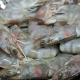 Plan de manejo de la pesquería de camarón del pacífico mexicano