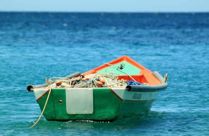 Conapesca activa línea telefónica directa de denuncias sobre pesca furtiva