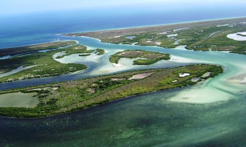 Ficha Reserva de la Biosfera Ría Lagartos