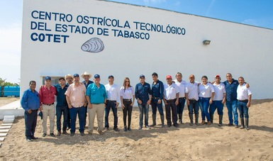 Para aumentar producción, desarrolla México su Programa Nacional de Ostricultura con el modelo de Tabasco