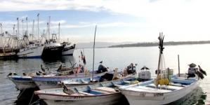 Para conservación de recursos, crean Zona de Refugio Pesquero Total Temporal en Quintana Roo