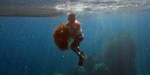 Para proteger fauna marina, extraen redes fantasmas en la Isla Farallón de San Ignacio, Sinaloa
