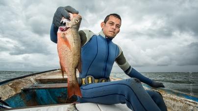 El Plan de Manejo Pesquero del Sistema Lagunar de Altata-Ensenada del Pabellón, Sinaloa para protección del recurso