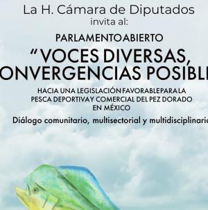 Foro Voces diversas, convergencias posibles: Posición indeclinable contra la pesca comercial de dorado (Coryphaena hippurus)