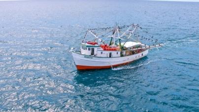 Veda temporal para la pesca de todas las especies de camarón en aguas marinas el océano Pacífico