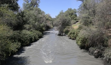 Buenas noticias para Zimapán: evoluciona firme el Programa de Restauración Ecológica para la región de Tula-Atitalaquia-Apaxco