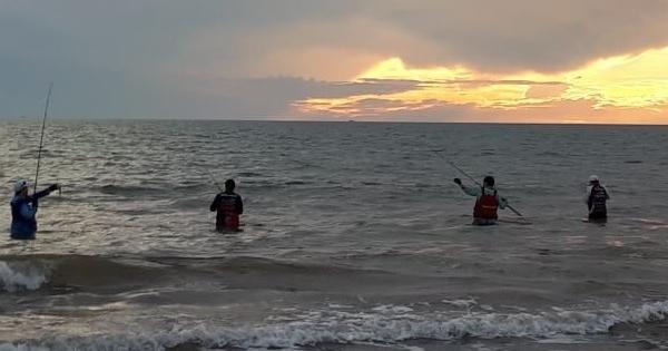 #ExpediciónSonora2019. Curvina golfina de playa Tojahui, Sonora