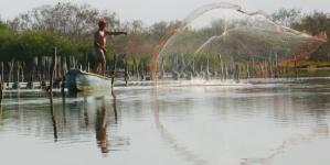 Histórica derrama en México: 1,391.7 MDP del programa Bienpesca en beneficio de 193 mil 295 pescadores y acuicultores