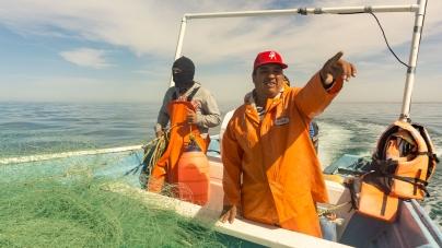Gobierno de México reconoce a los pescadores en el Día Mundial de la Gente de Mar