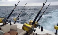 Yusso Barquet y compañeros, al encuentro del atún amarillo (Thunnus albacares) de Veracruz