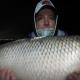 Pesca Aventura y Del Pescador: carpas del río La Plata, en pleno Buenos Aires, Argentina